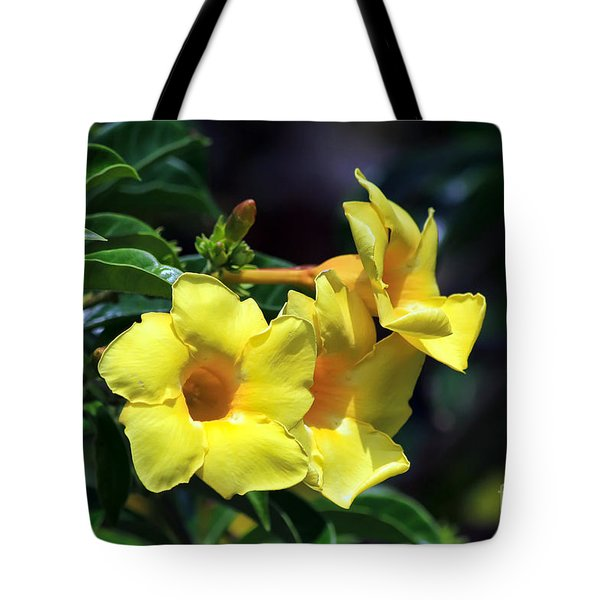 Yellow Allamanda Tote Bag by Teresa Zieba