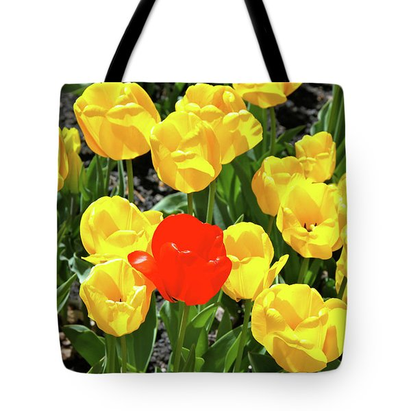 Yellow And One Red Tulip Tote Bag by Ed  Riche