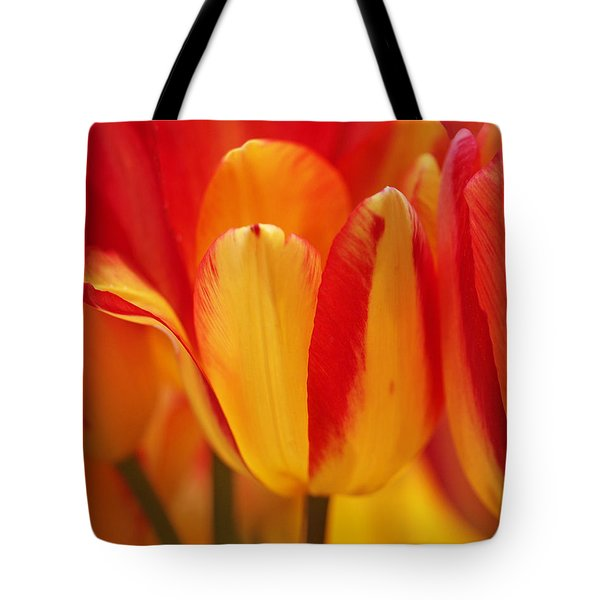 Yellow And Red Striped Tulips Tote Bag