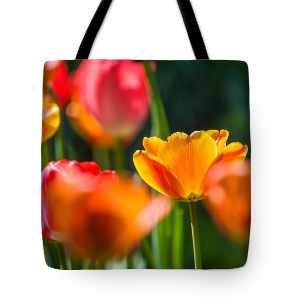 Yellow And Red Tote Bag by Trevor Chriss
