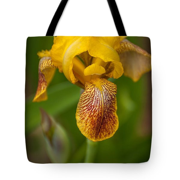 Yellow Bearded Iris Tote Bag