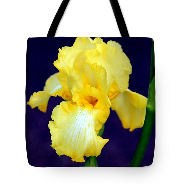 Yellow Bearded Iris Tote Bag by Kathy  White