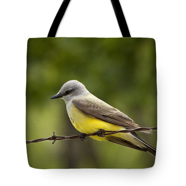 Yellow-bellied Fence-sitter Tote Bag