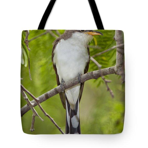Yellow-billed Cuckoo Tote Bag