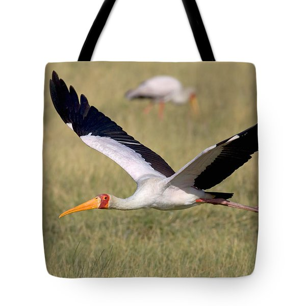 Yellow-billed Stork Flying Above A Field Tote Bag