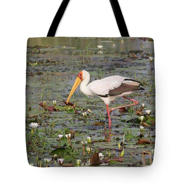 Yellow-billed Stork Mycteria Ibis Tote Bag