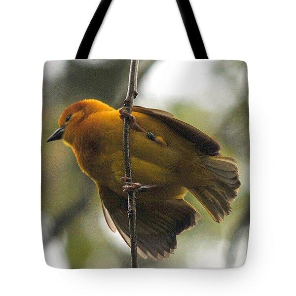 Yellow Bird Tote Bag by Steve Archbold