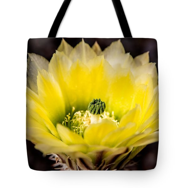 Yellow Cactus Flower Tote Bag by  Onyonet  Photo Studios