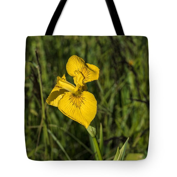 Tote Bag featuring the photograph Yellow Crown by Leif Sohlman