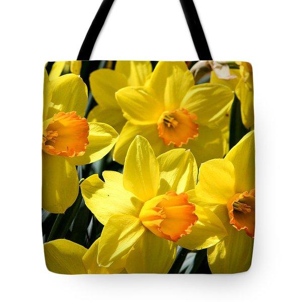Yellow Daffodils Tote Bag by Menachem Ganon