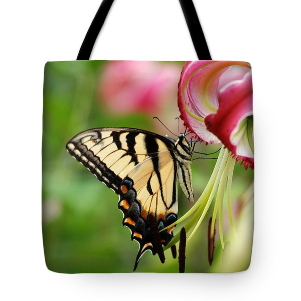 Yellow Eastern Swallowtail Butterfly Tote Bag by Eva Kaufman