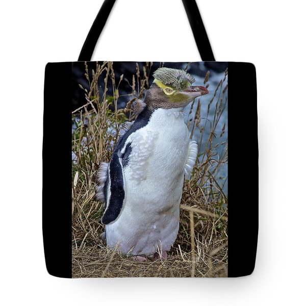 Endangered Yellow Eyed Penguin Hoiho Tote Bag by Venetia Featherstone-Witty