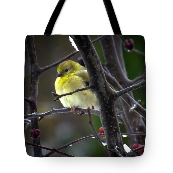 Yellow Finch Tote Bag by Karen Wiles