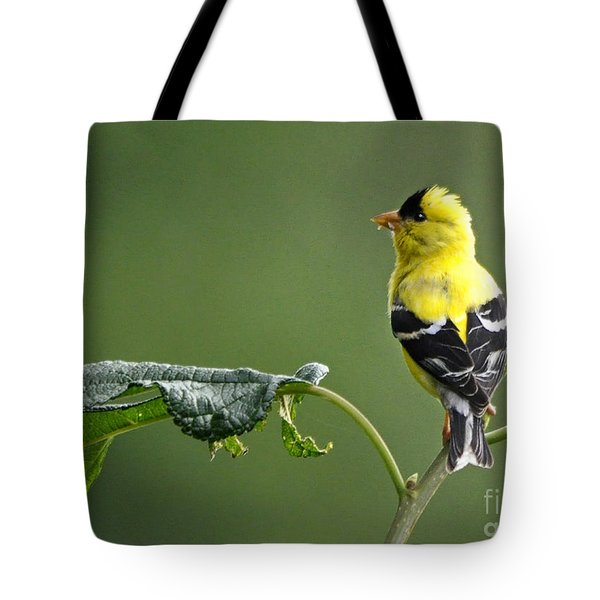 Tote Bag featuring the photograph Yellow Finch by Nava Thompson