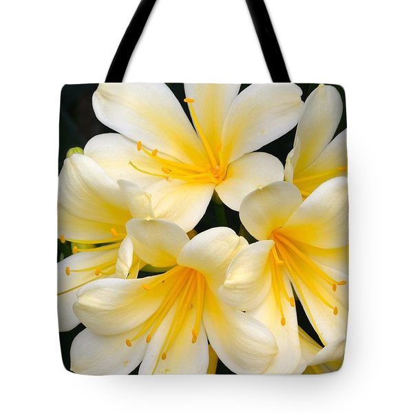 Tote Bag featuring the photograph Clivia Yellow Flowers by Jeannie Rhode