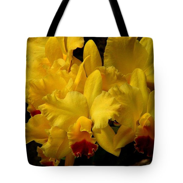 Yellow Folds Tote Bag