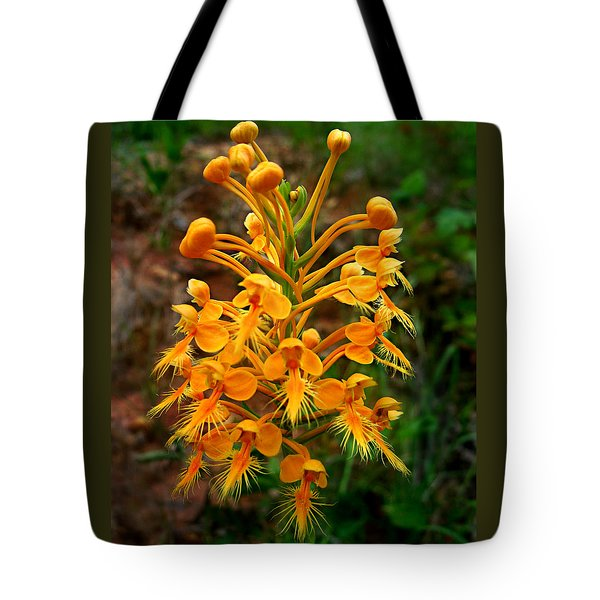 Tote Bag featuring the photograph Wild Yellow Fringed Orchid by William Tanneberger