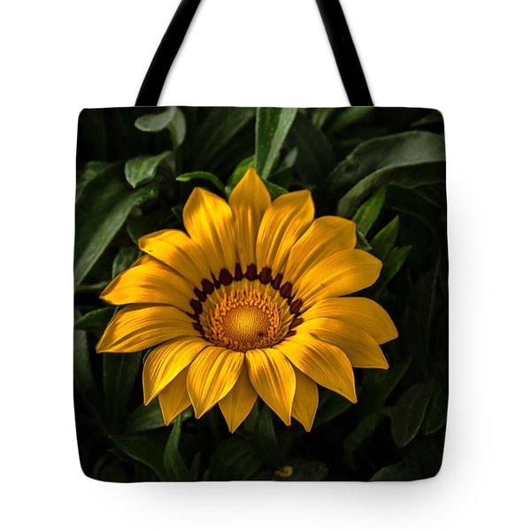 Yellow Gazania Tote Bag by Robert Bales