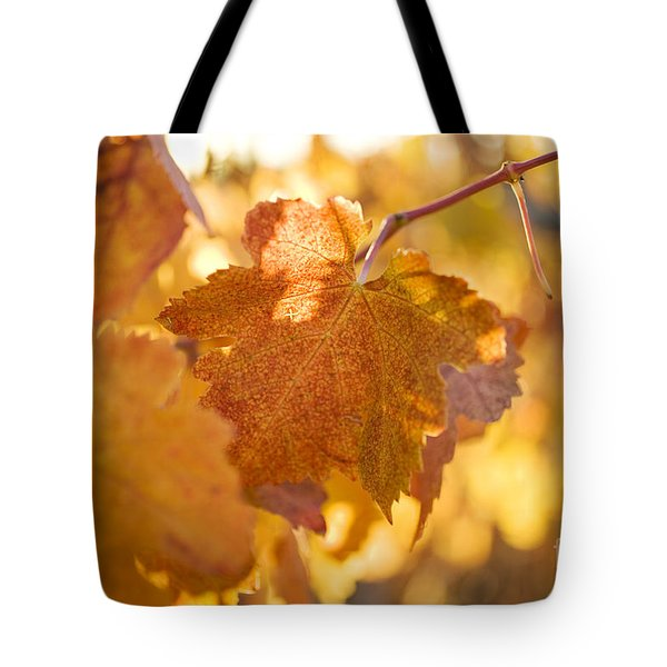 Tote Bag featuring the photograph Yellow Grape Leaves by Charmian Vistaunet
