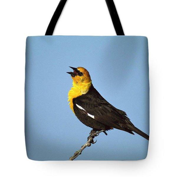 Yellow-headed Blackbird Singing Tote Bag