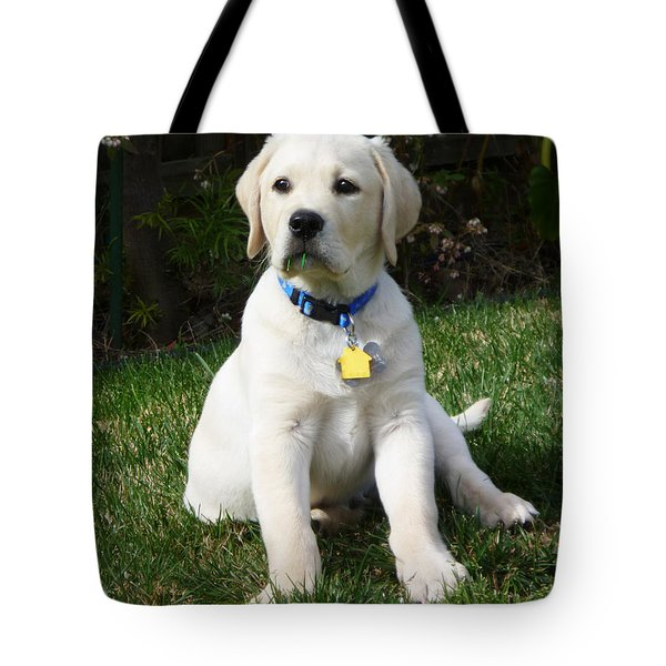 Yellow Lab Puppy Standing Guard  Tote Bag
