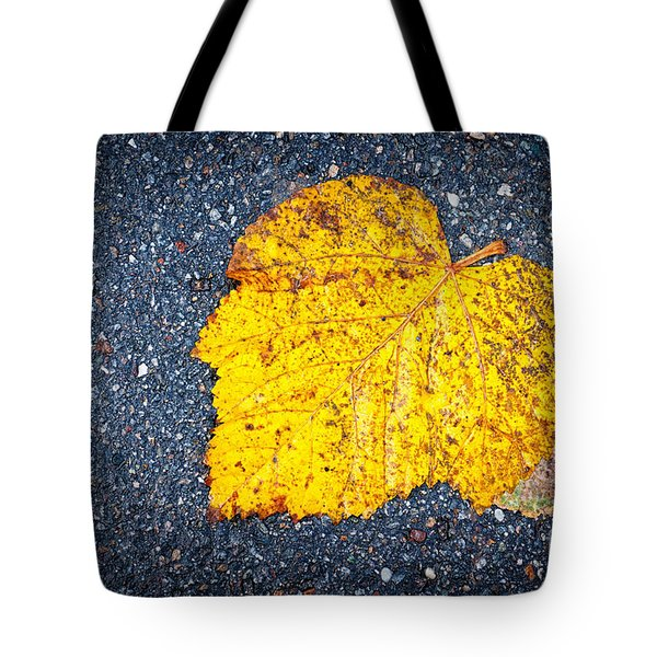 Yellow Leaf On Ground Tote Bag by Silvia Ganora