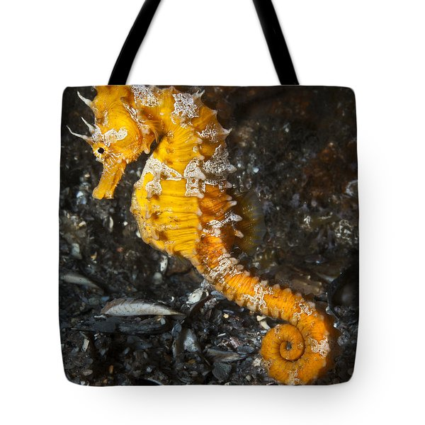 Yellow Longsnout Seahorse Tote Bag