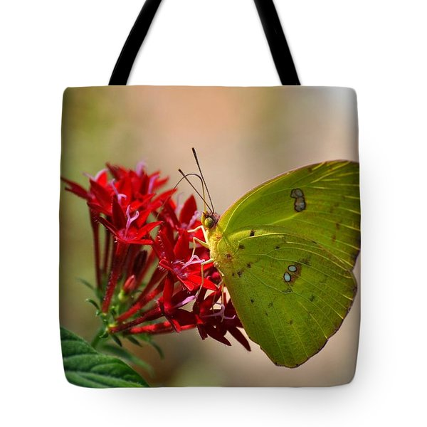 Tote Bag featuring the photograph Yellow Moth by Kelly Nowak