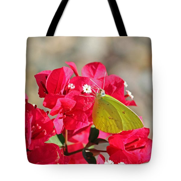 Yellow On Fuschia Tote Bag by Suzanne Gaff