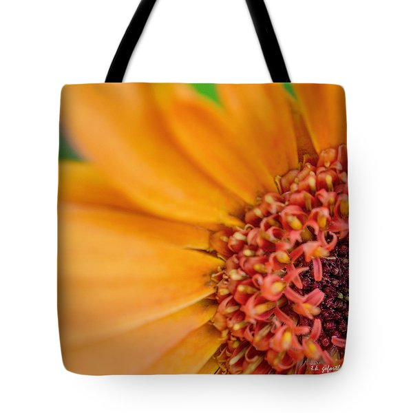 Tote Bag featuring the photograph Yellow Orange Gerbera Squared by TK Goforth