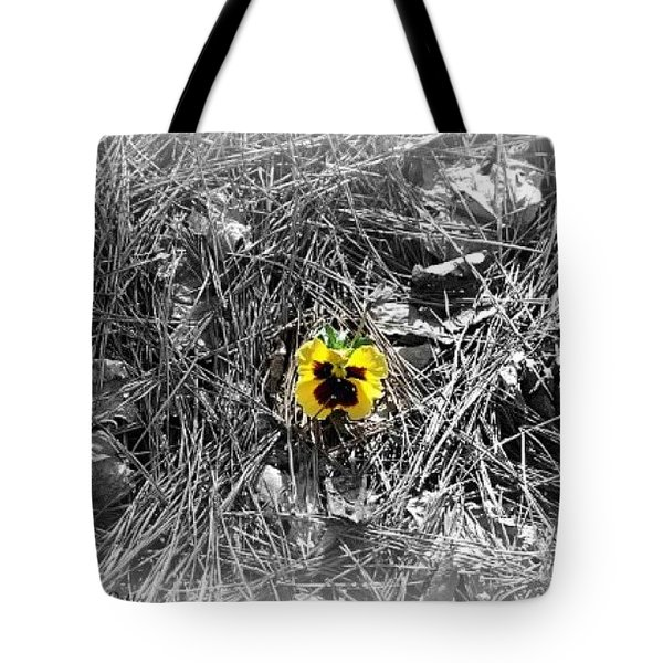 Tote Bag featuring the photograph Yellow Pansy by Tara Potts