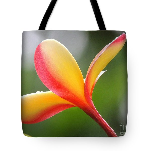 Yellow Pink Plumeria Tote Bag