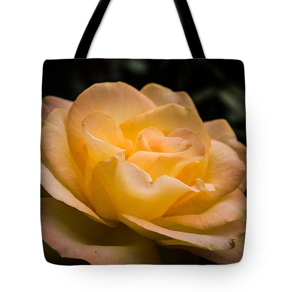 Tote Bag featuring the photograph Yellow Ray Of Sunshine by Jeff Folger
