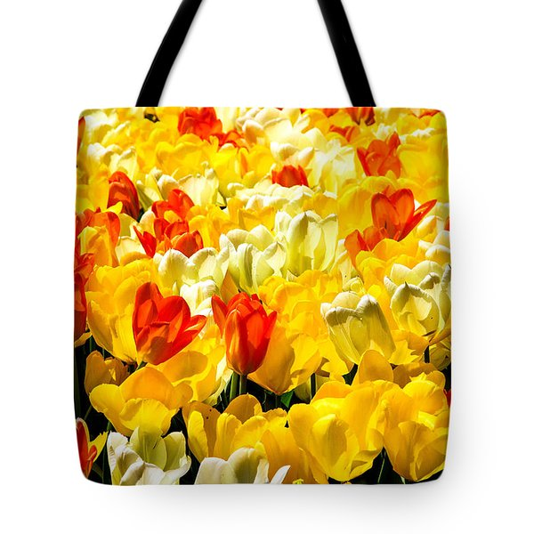 Yellow Red And White Tulips Tote Bag by Menachem Ganon