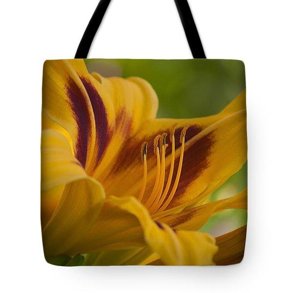 Yellow Rising Tote Bag by Matthew Blum
