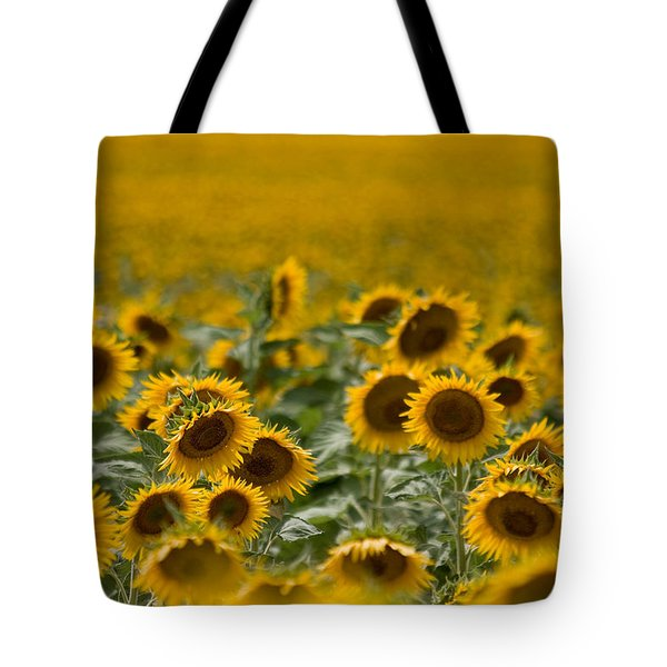 Tote Bag featuring the photograph Yellow by Ronda Kimbrow