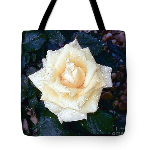 Tote Bag featuring the photograph Yellow Rose At Dawn by Alys Caviness-Gober