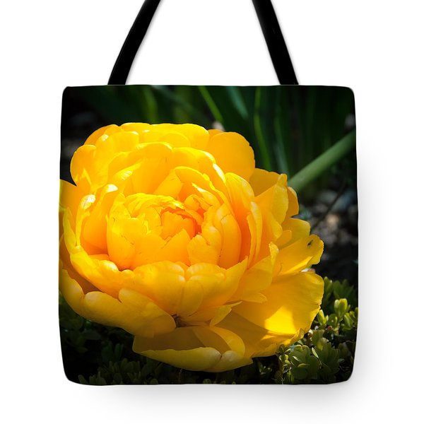 Tote Bag featuring the photograph Yellow Rose by Dee Dee  Whittle