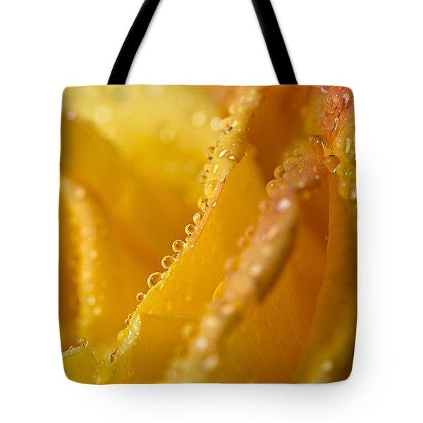 Yellow Rose Dew Tote Bag