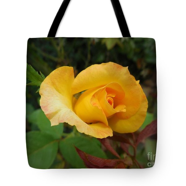 Yellow Rose Of Texas Tote Bag by Eloise Schneider