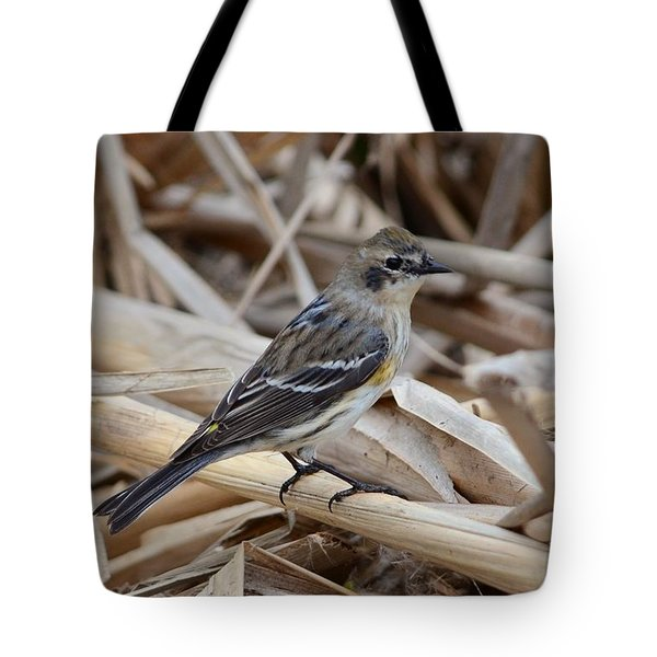 Tote Bag featuring the photograph Yellow-rumped Warbler by Debra Martz