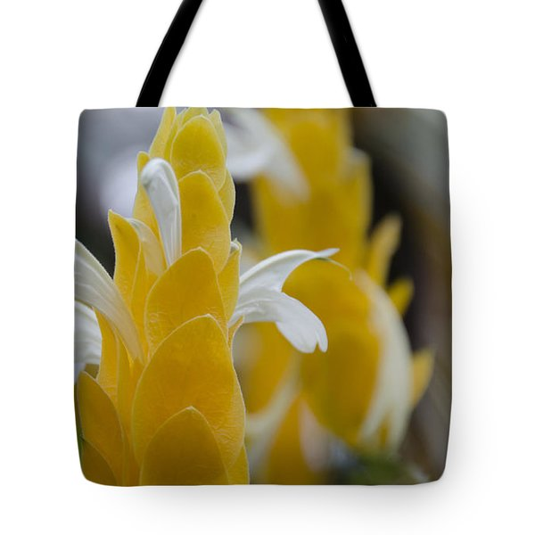 Yellow Shrimp Swirl Tote Bag by Penny Lisowski