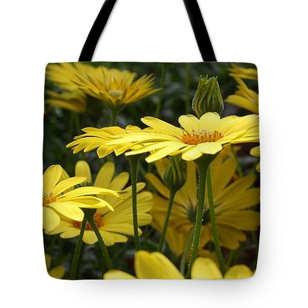 Yellow Splendor Tote Bag