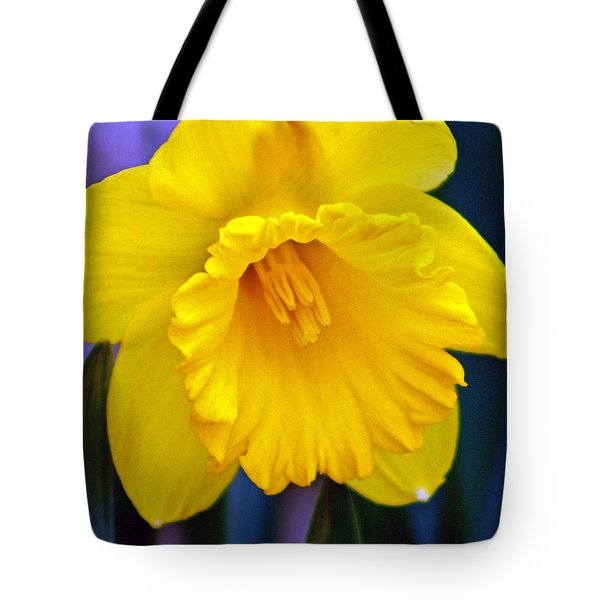 Tote Bag featuring the photograph Yellow Spring Daffodil by Kay Novy