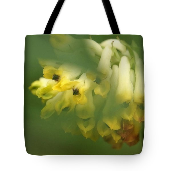 Tote Bag featuring the photograph Yellow Spring by Inge Riis McDonald