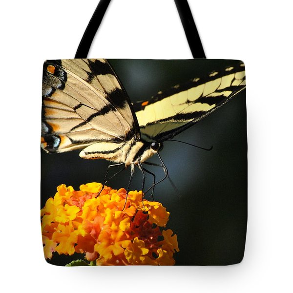 Tote Bag featuring the photograph Yellow Swallowtail by Kelly Nowak