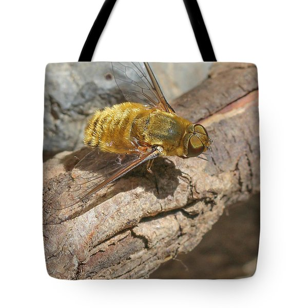 Tote Bag featuring the photograph Yellow True Bee Fly - Bombiliinae by Jivko Nakev