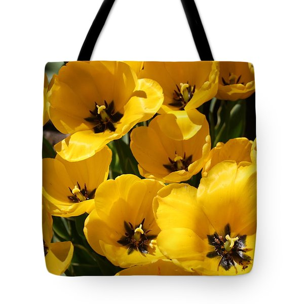 Tote Bag featuring the photograph Golden Tulips In Full Bloom by Dora Sofia Caputo Photographic Art and Design