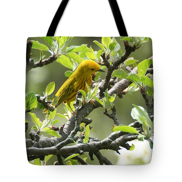 Yellow Warbler In Pear Tree Tote Bag