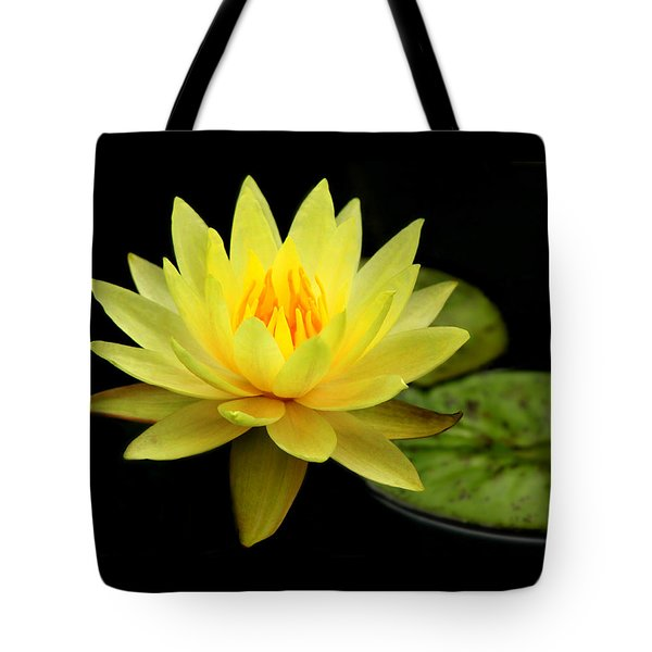 Yellow Water Lily Tote Bag by Elizabeth Budd